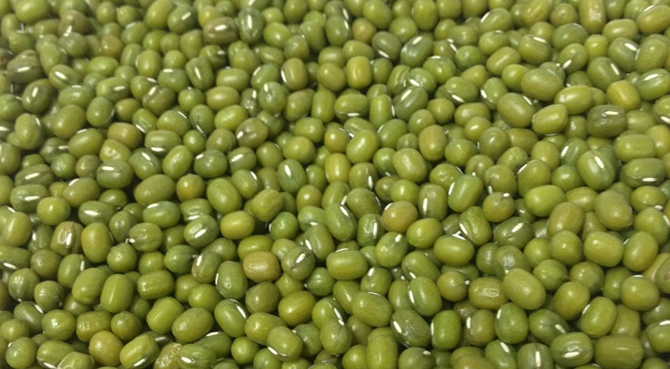 GREEN MUNG BEAN MACHINE DRESSED 25 KG BAG . DAILY PRICE UPDATE